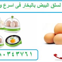 البيض 1