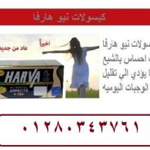 هارفا 3