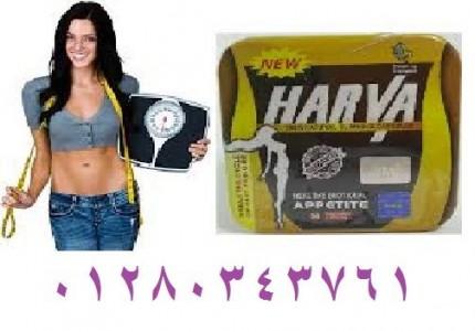 هارفا 13